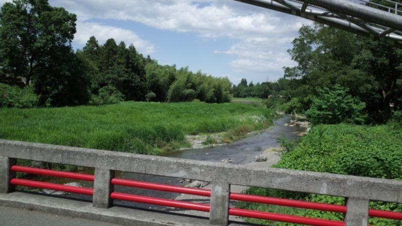 橋上からの川