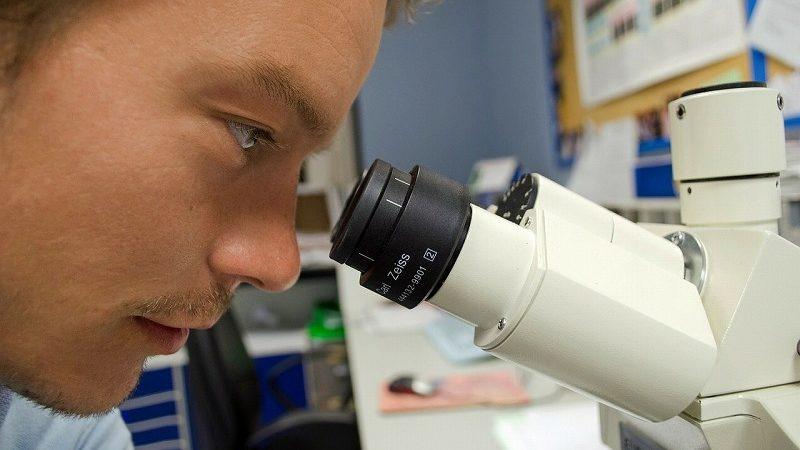 顕微鏡をのぞく人