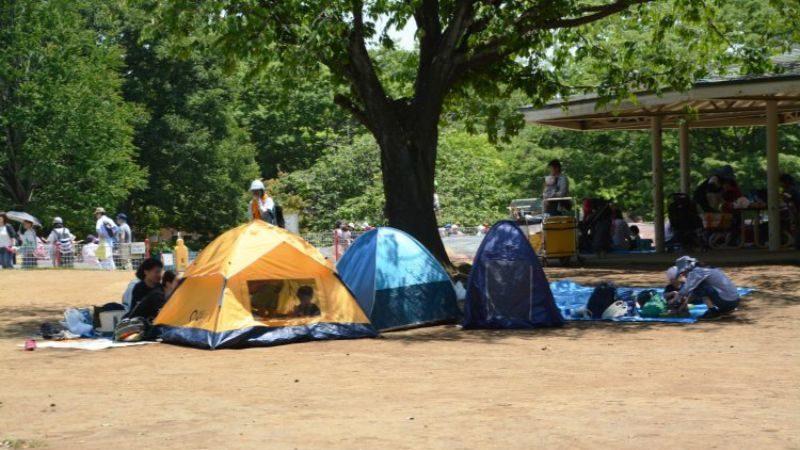 清和県民の森のキャンプ場