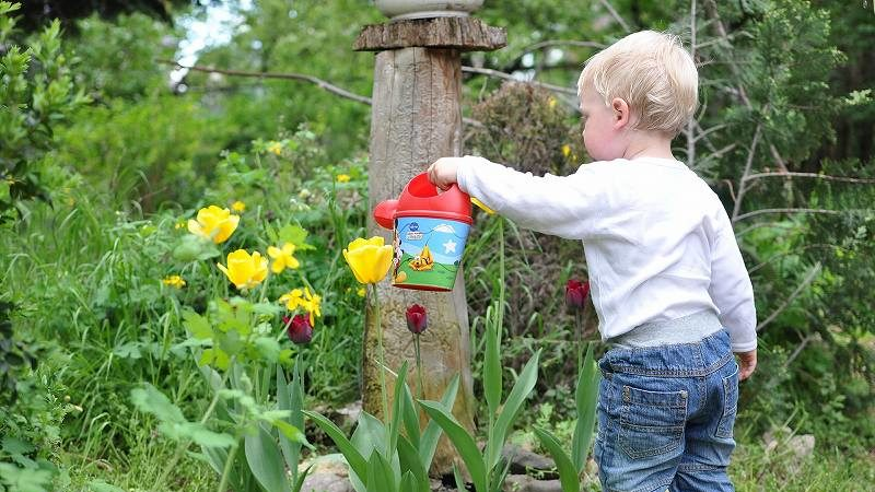 花に水をあげる男の子
