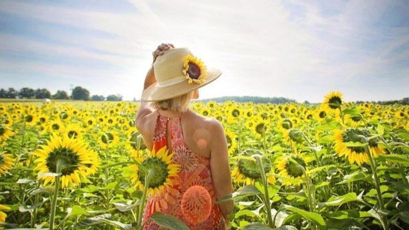 ひまわり畑の中の女性