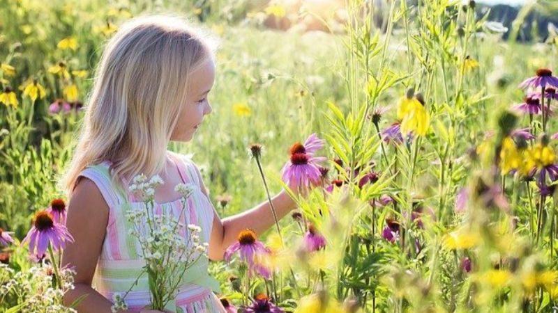花畑の中の女の子