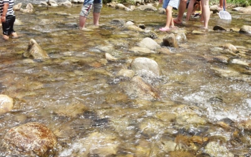 川遊び 能勢