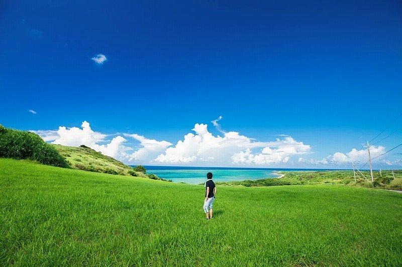 青い空と緑の芝